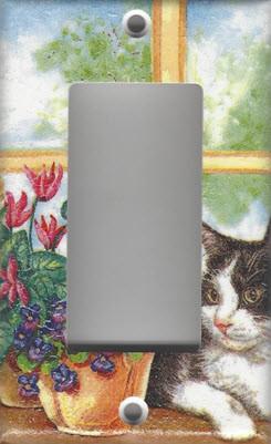 Black & White Cat in Window - GFI/Rocker