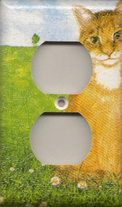 Orange Tabby - Outlet