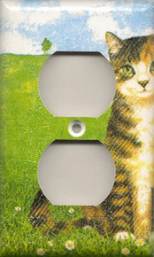 Black Striped Tabby - Outlet