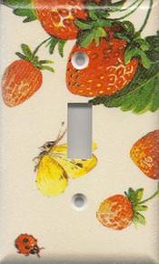 Strawberries - Single Switch
