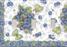 Blueberries & Butterflies - Triple Switch