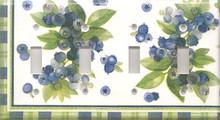 Blueberries - Quadruple Switch