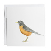 Robin Note Card