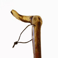 "Sumac Tree Root Walking Cane - ""Rogue"""