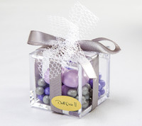 Mesh and Satin Decorated Favor Box