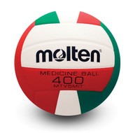 Setter Training Ball- Traditional Paneling