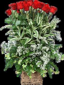 กระเช้าดอกไม้ B17