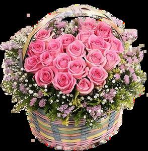 กระเช้าดอกไม้ B19