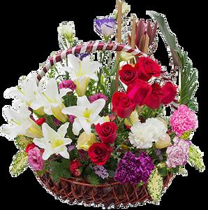 กระเช้าดอกไม้ B22