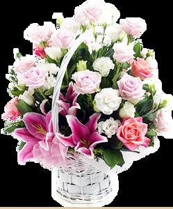 กระเช้าดอกไม้ B24