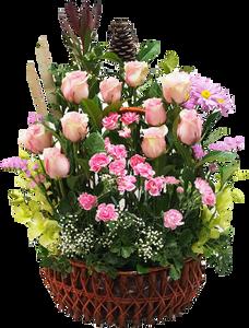 กระเช้าดอกไม้ B29