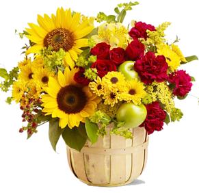 กระเช้าดอกไม้ B35