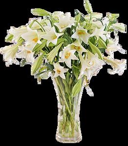 แจกันดอกไม้ C13
