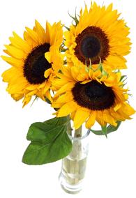 แจกันดอกไม้ C35