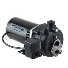 Blue Angel 100CJW 1 HP Cast Iron Convertible Well Jet Pump