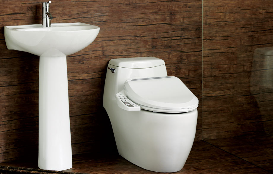 add ultimate luxury to your bathroom of the bio bidet ultimate luxury class bb600 advanced bidet toilet seat