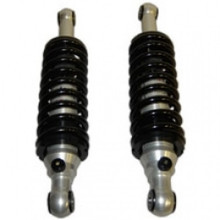 Protech Shocks GTM Libra Fronts