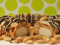 Gourmet Salted Nut Roll Pair