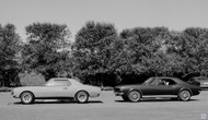 1966 Chevrolet Studio Poster