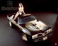 1977 Pontiac Firebird Trans Am Coupe Poster