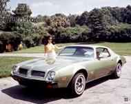1974 Pontiac Firebird Sport Coupe Poster