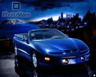2002 Pontiac Firebird Convertible Poster
