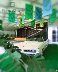 1966 Pontiac Tempest GTO Convertible Poster