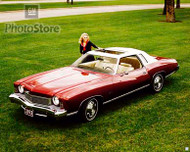 1973 Chevrolet Monte Carlo Poster