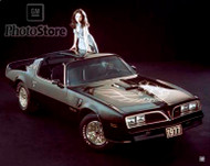 1977 Pontiac Firebird Trans Am Coupe Poster