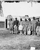 Black Teamsters During Civil War
