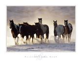 David R. Stoecklein Paints in the Snow