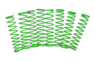 Associated Monster GT Green Powder Coated Dual Rate Shock Springs