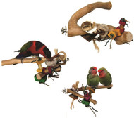 Java Wood Branch Bird Toy 1