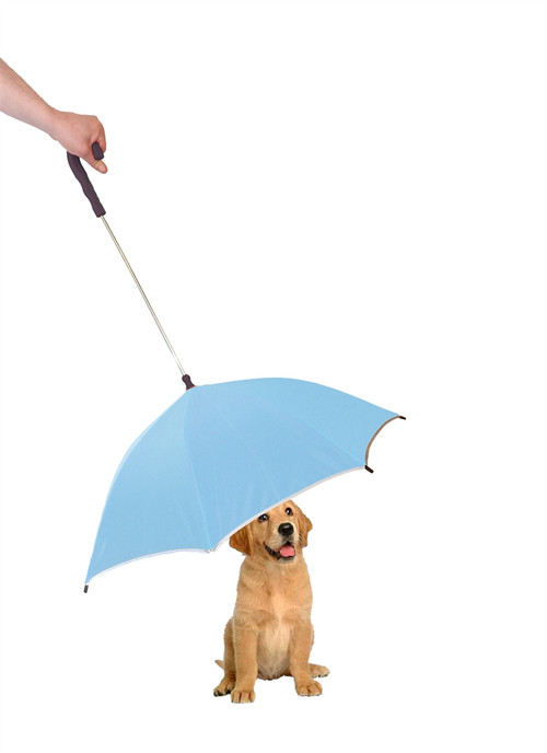 Keep your pooch dry with this unique pet umbrella in sky blue color.