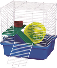 Shop our hamster kits!