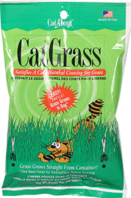 Shop our indoor grass for cats!