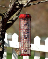 This caged bird feeder will keep the squirrels out.