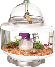 Shop our terrarium containers for small animals.