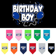 Celebrate with our Birthday Boy dog scarves!