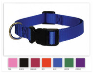 We have nylon dog collars in every color.