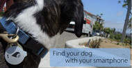 Never lose your dog with our TrackR Bravo with free App included.