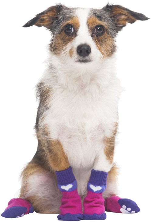 Fashion pet socks, pink and blue with heart and paw print.