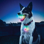 NITE IZE SpotLit Clip-On LED Carabiner Light, Weather Resistant, 5 LED Colors