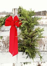 Cedar Christmas Garland