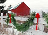 Balsam Christmas Garland