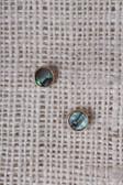 Circle Abalone Shell Stud Earrings