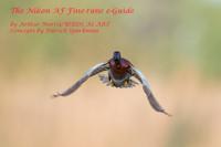 The Nikon AF Fine-tune e-Guide