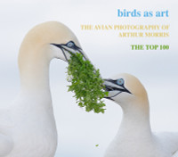 The Avian Photography of Arthur Morris - CD