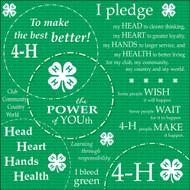 4-H Collection The Power 12 x 12 Scrapbook Paper by It Takes Two