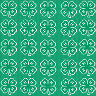 4-H Collection Green & White Clovers 12 x 12 Scrapbook Paper by It Takes Two